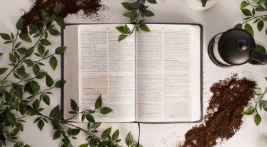 bible-2.jpg