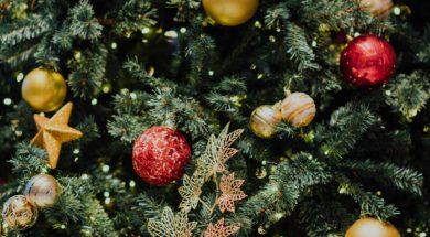 unsplash-christmas-tree-1.jpg