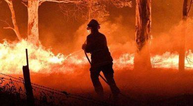 firefighter-1.jpg