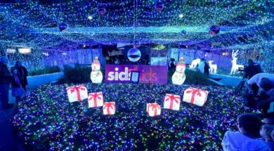 australia-largest-christmas-light-display.jpg