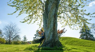 big-tree-kristy-kravchenko-unsplash.jpg