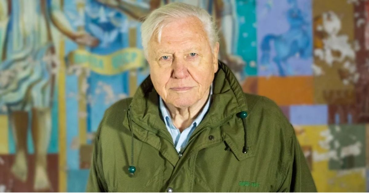 David Attenborough Calls His New Documentary His 'Witness Statement' To The World