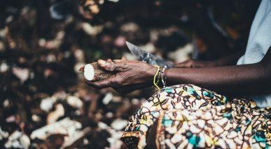 cassava-farming-sierra-leone-annie-spratt-unsplash.jpg